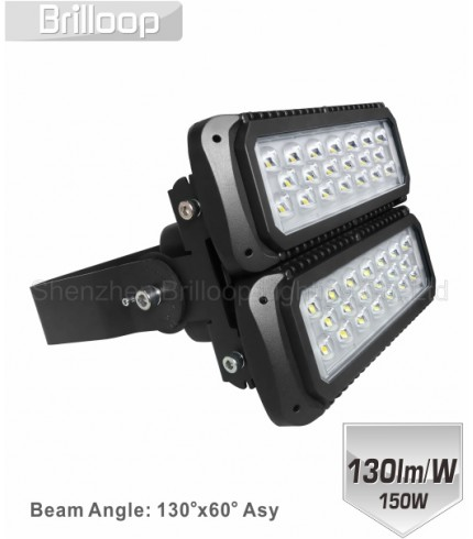 M17: 150W Modular Floodlight