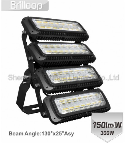 M17: 300W Modular Floodlight