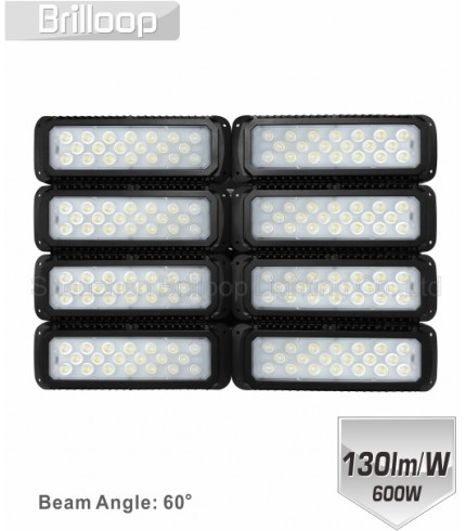 M17: 600W Modular Floodlight