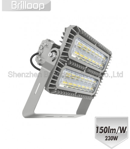 M18: 230W Modular Floodlight