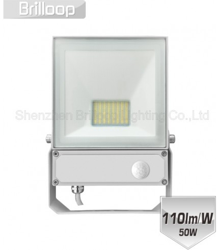 F17.AC-PIR  Floodlight