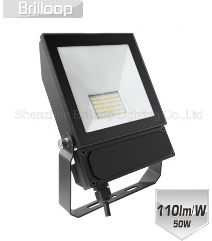 F17.AC Floodlight