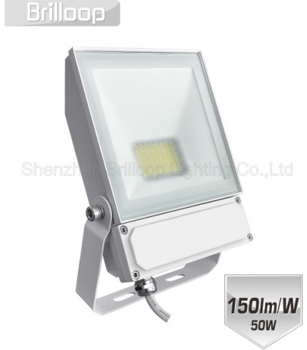 F17.DC Floodlight